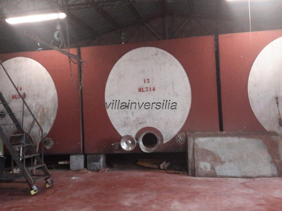 Foto 11/19 per rif. V332018 azienda Siena