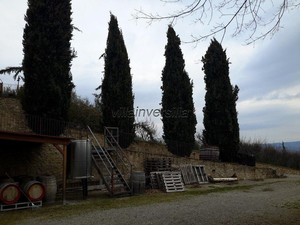 Foto 11/11 per rif. V 62018 podere Toscana
