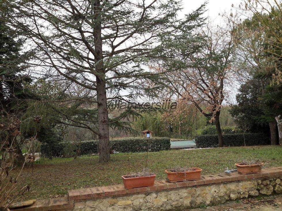 Foto 3/11 per rif. V 62018 podere Toscana