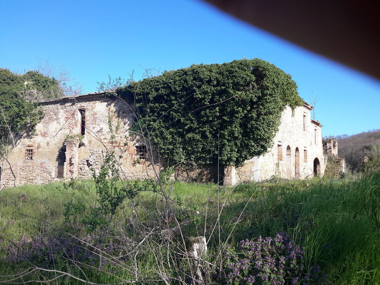 Colonica/casale a Asciano