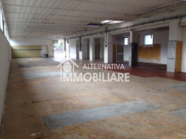 Locale comm.le/Fondo in affitto a Lucca
