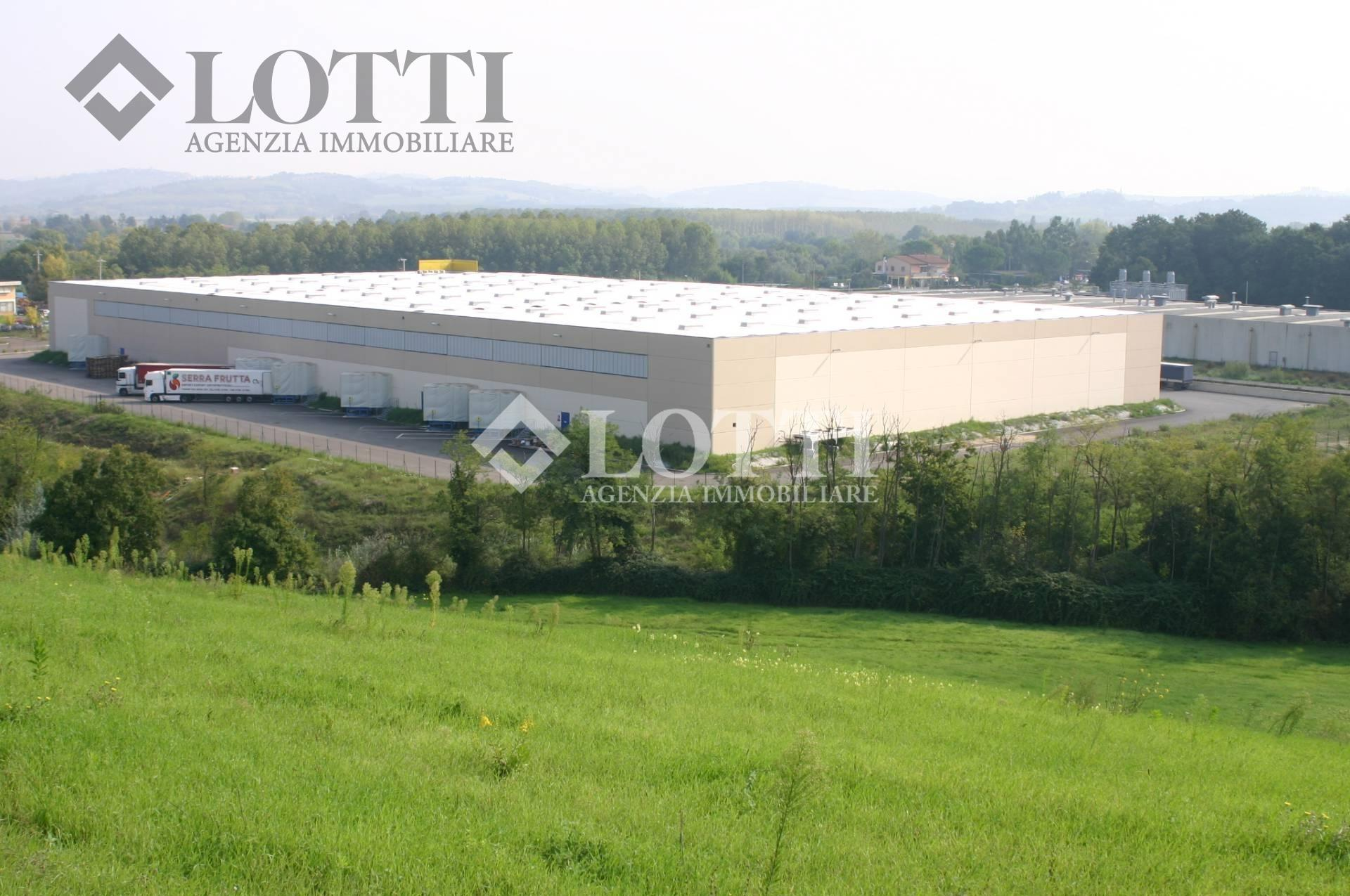 Industrial depot for sale in Selvatelle, Terricciola (PI)
