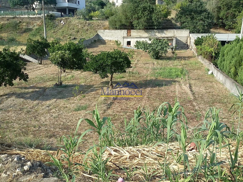 Immobiliare mannocci terreno edif residenziale in vendita a locri rc - Mannocci immobiliare ...