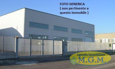 Mgmnet.it: Capannone industriale in vendita a Vicopisano