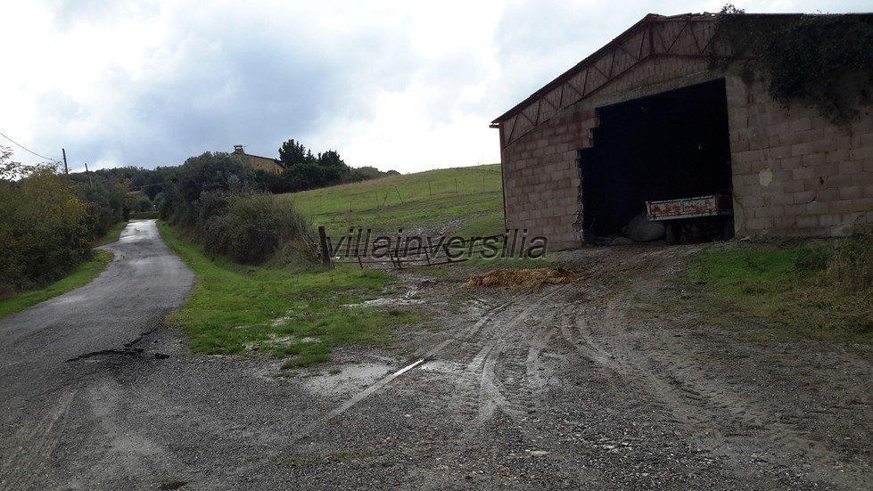 Foto 6/19 per rif. V 782018 azienda Volterra