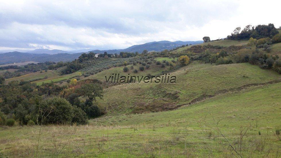 Foto 18/19 per rif. V 782018 azienda Volterra