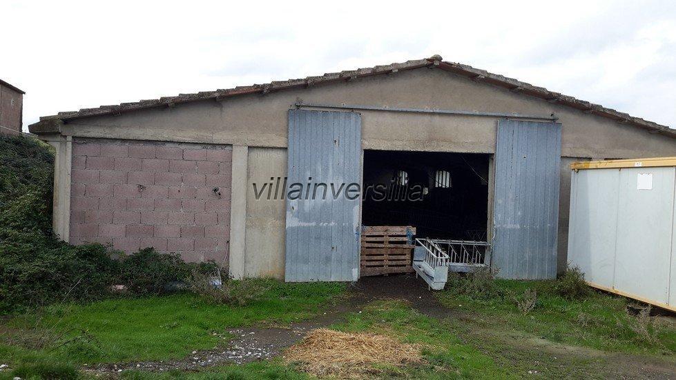 Foto 7/19 per rif. V 782018 azienda Volterra