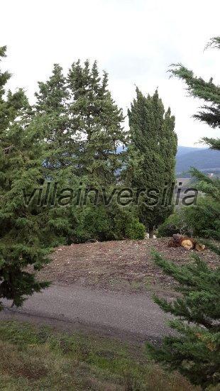 Foto 8/19 per rif. V 782018 azienda Volterra