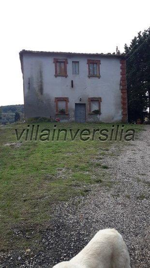Foto 4/19 per rif. V 782018 azienda Volterra