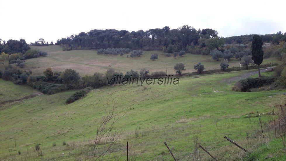 Foto 19/19 per rif. V 782018 azienda Volterra