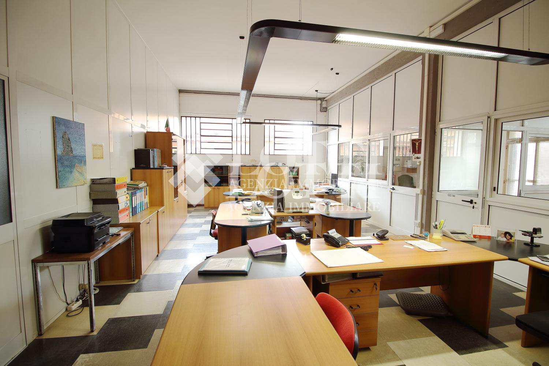 Ufficio in affitto commerciale, rif. 583-D
