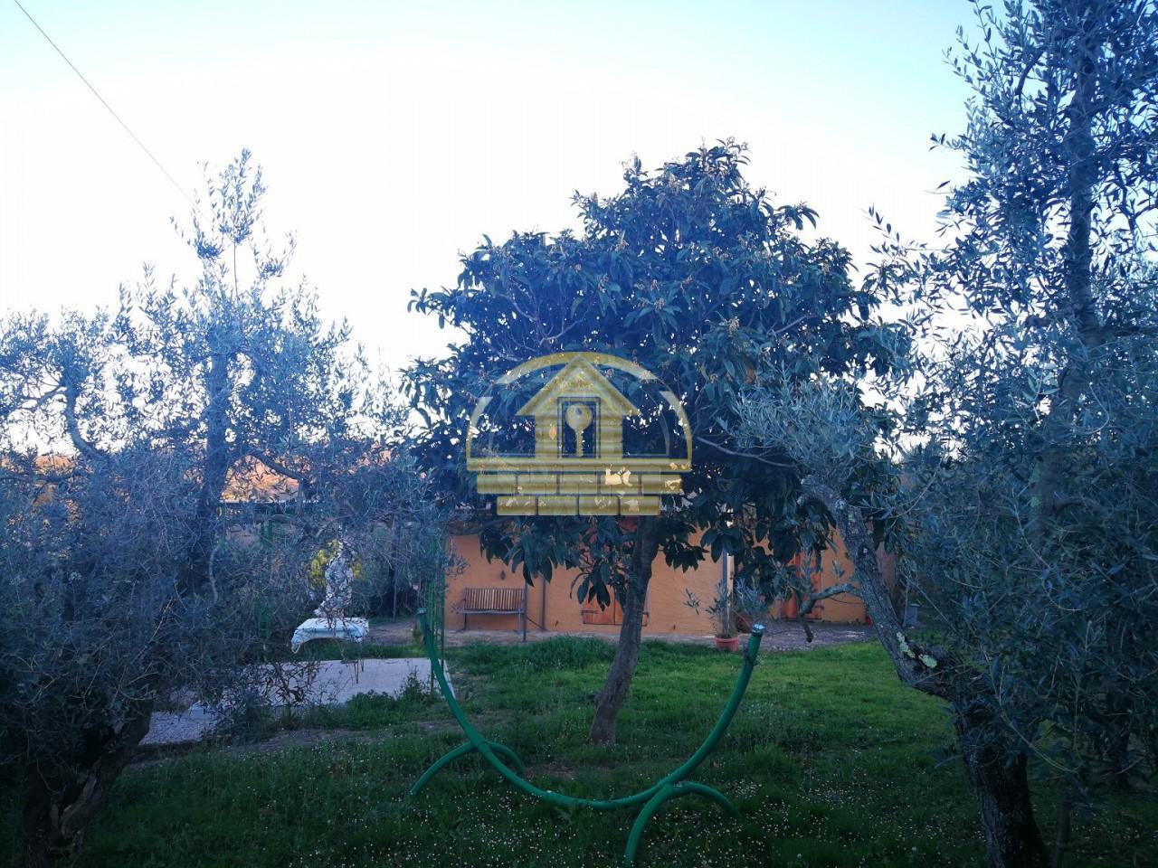 Colonica in vendita a Donoratico, Castagneto Carducci (LI)
