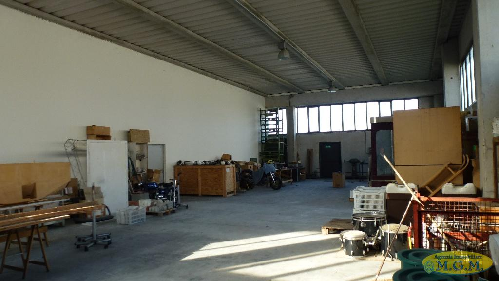 Mgmnet.it: Capannone industriale in affitto a Pontedera