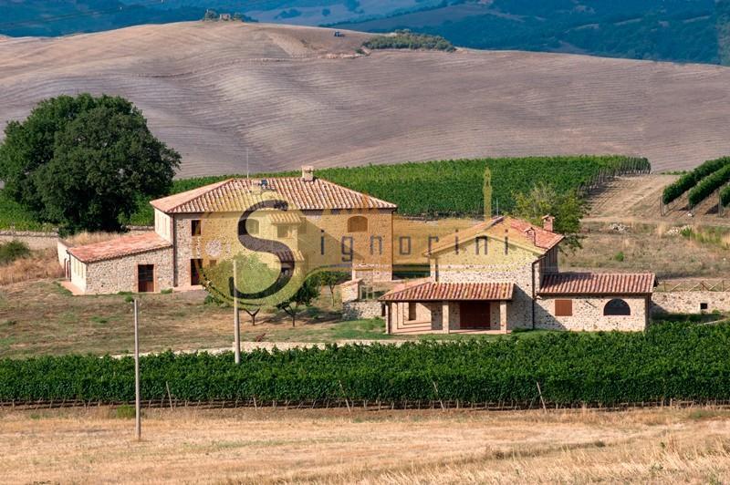 Azienda agricola in vendita a Castel del Piano (GR)