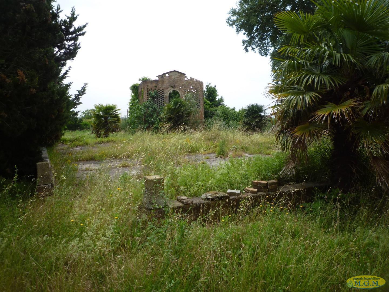 Mgmnet.it: Colonica in vendita a Montopoli in Val d'Arno
