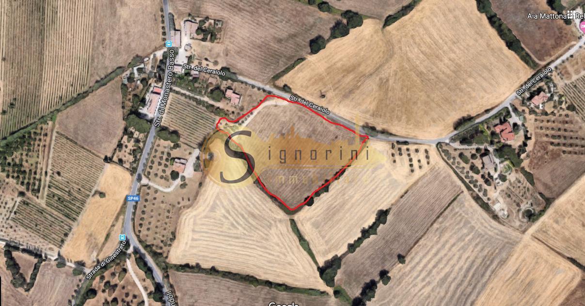Terreno agricolo in vendita a Siena