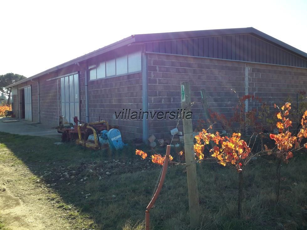 Photo 4/11 for ref. V  612019 azienda Castiglione de