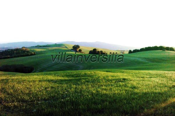 Foto 1/10 per rif. V 692019 podere prov. Siena