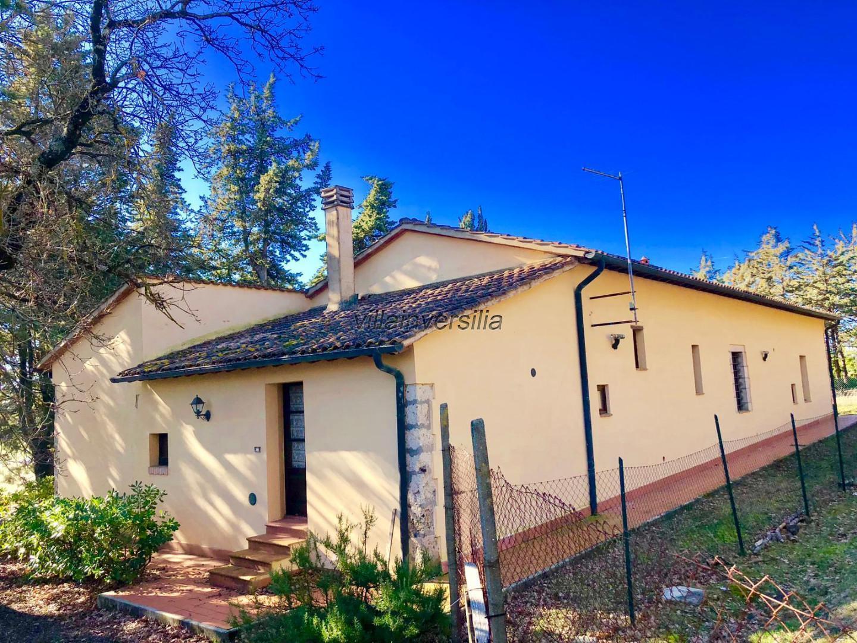 Foto 14/19 per rif. V 742019 podere San Gimignano