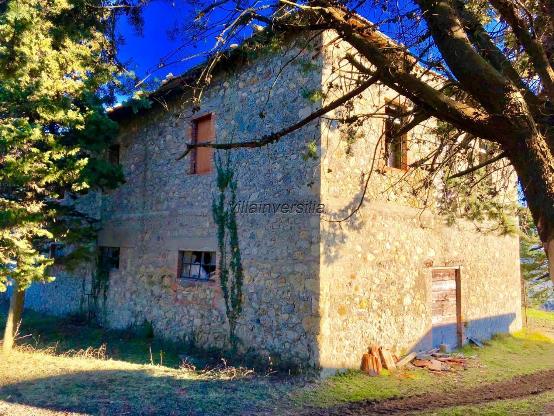 Foto 12/19 per rif. V 742019 podere San Gimignano