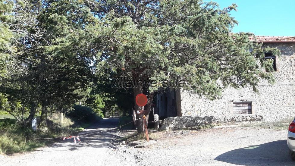 Foto 3/19 per rif. V 742019 podere San Gimignano