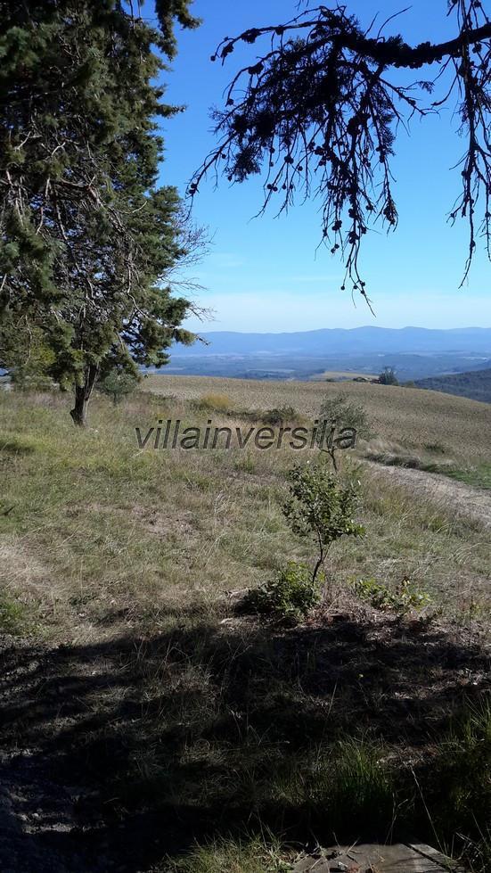 Foto 19/19 per rif. V 742019 podere San Gimignano