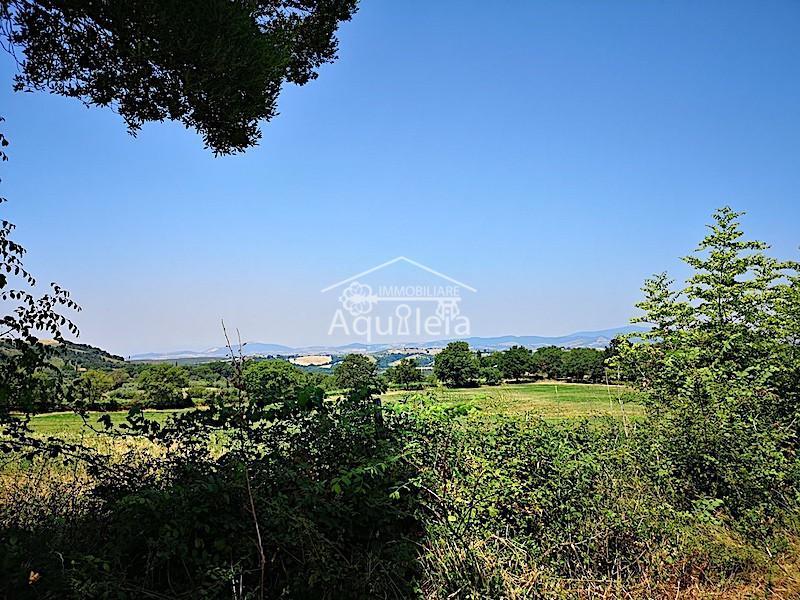 Casa singola in vendita a Polveraia, Scansano (GR)