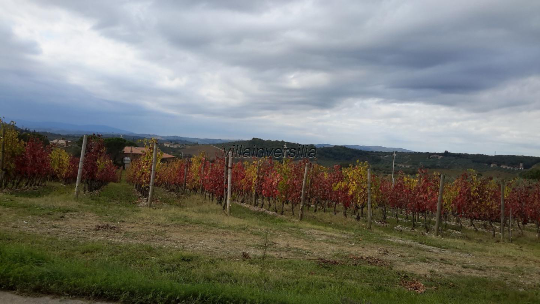 Сельскохозяйственная земля для Castelnuovo Berardenga