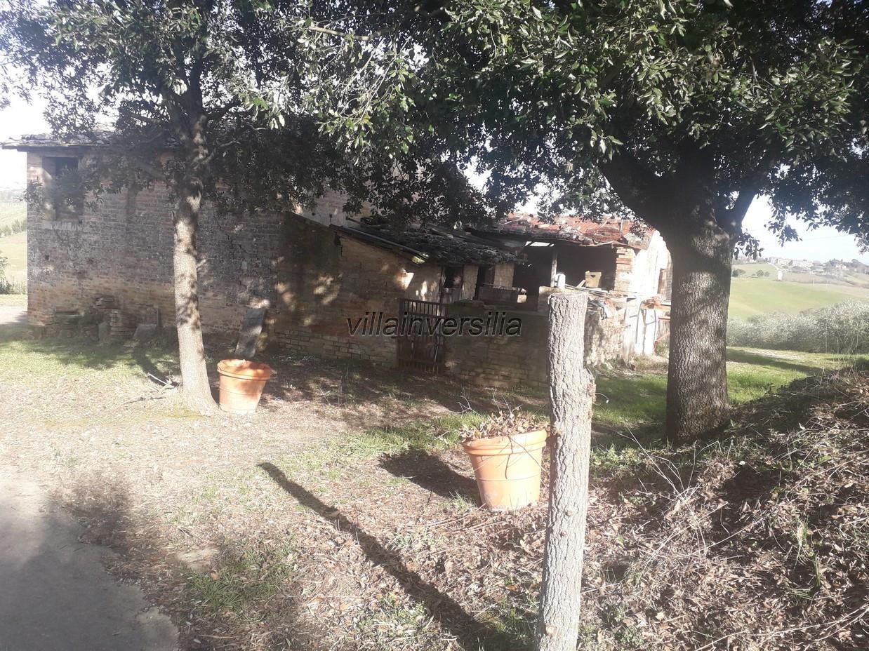 Foto 13/17 per rif. V 42020 casale Siena