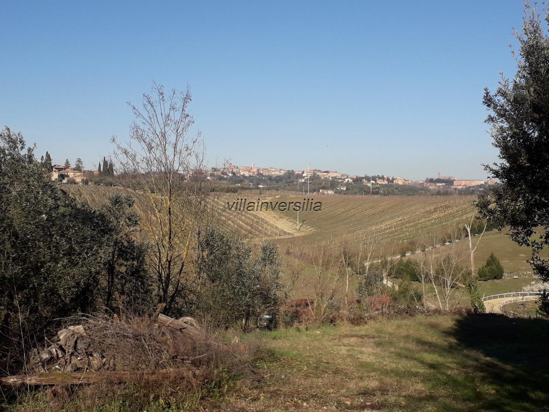 Foto 3/17 per rif. V 42020 casale Siena