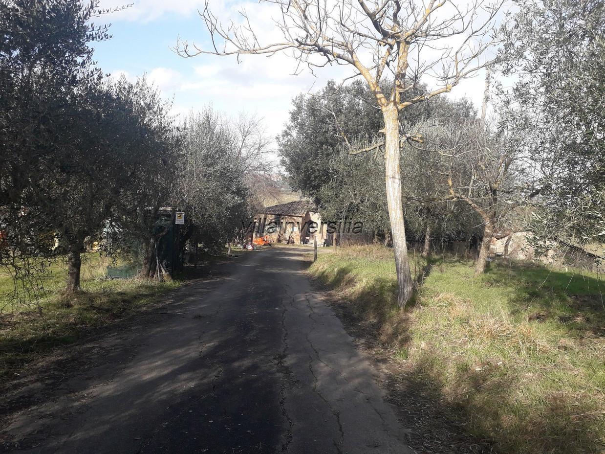 Foto 7/17 per rif. V 42020 casale Siena