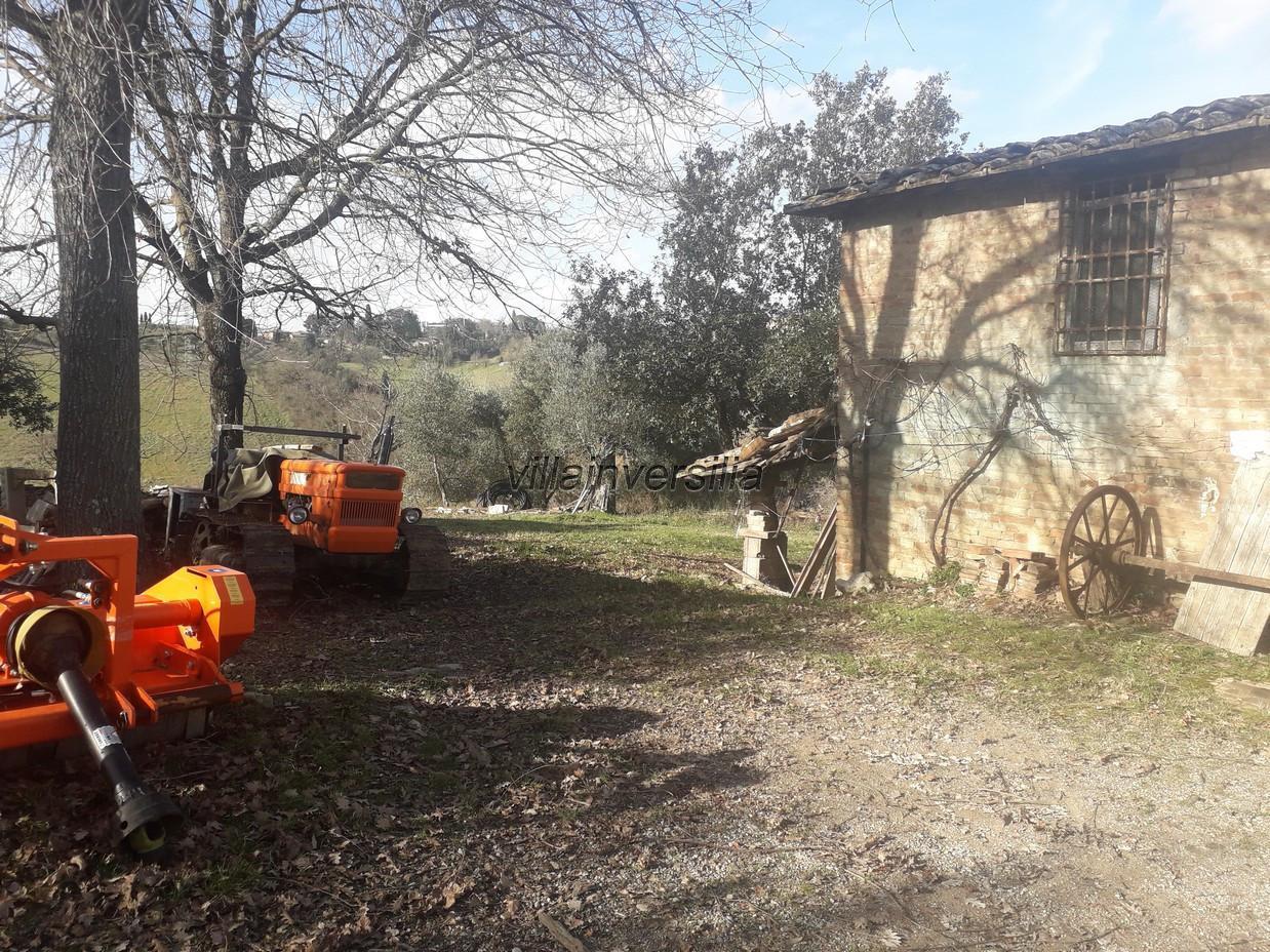 Foto 9/17 per rif. V 42020 casale Siena
