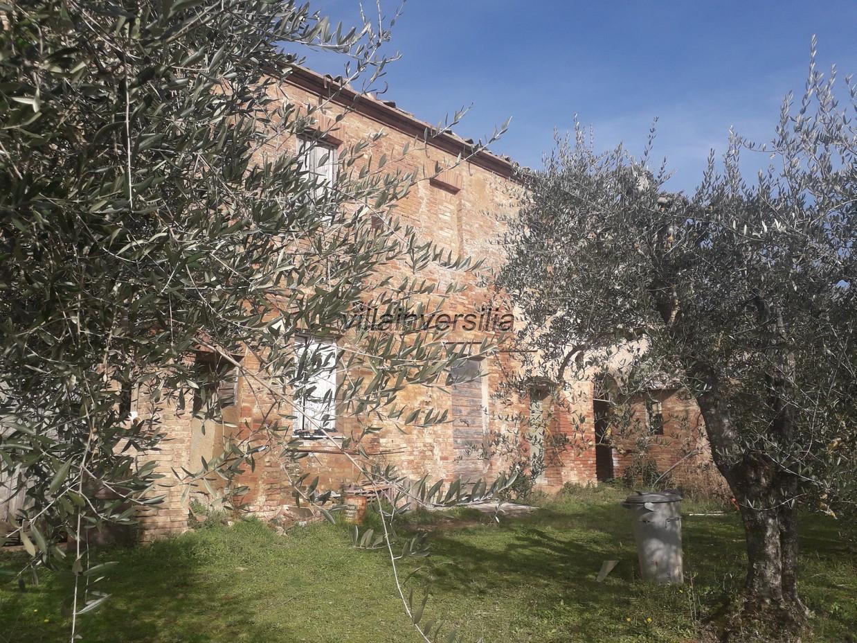 Foto 1/12 per rif. V 52020  casale  Siena