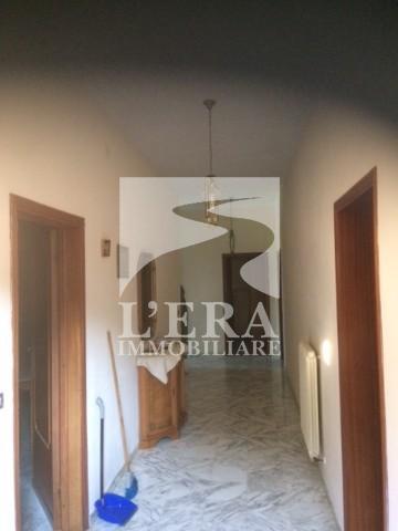 Casa semindipendente in affitto a Fauglia (PI)