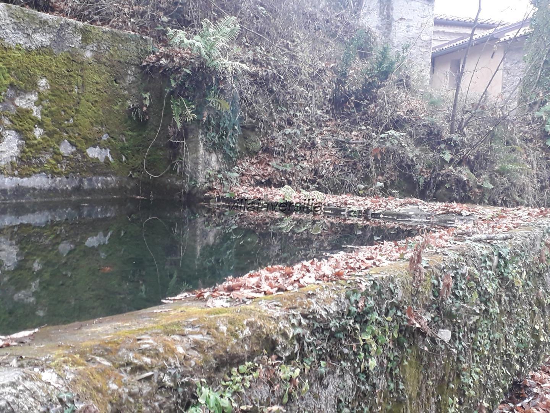 Foto 2/21 per rif. V 162020 podere Lunigiana