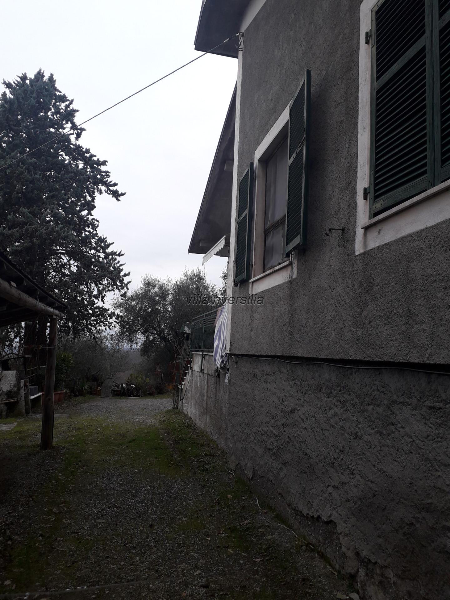 Foto 9/21 per rif. V 162020 podere Lunigiana