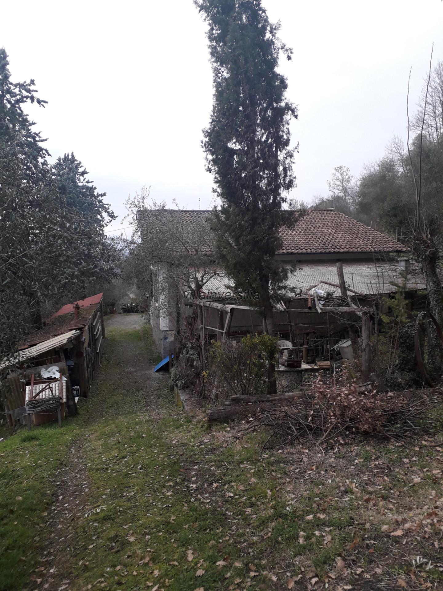 Foto 7/21 per rif. V 162020 podere Lunigiana