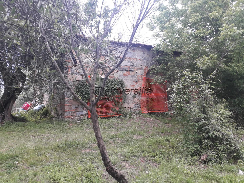 Foto 3/11 per rif. V 552020 collina Massarosa