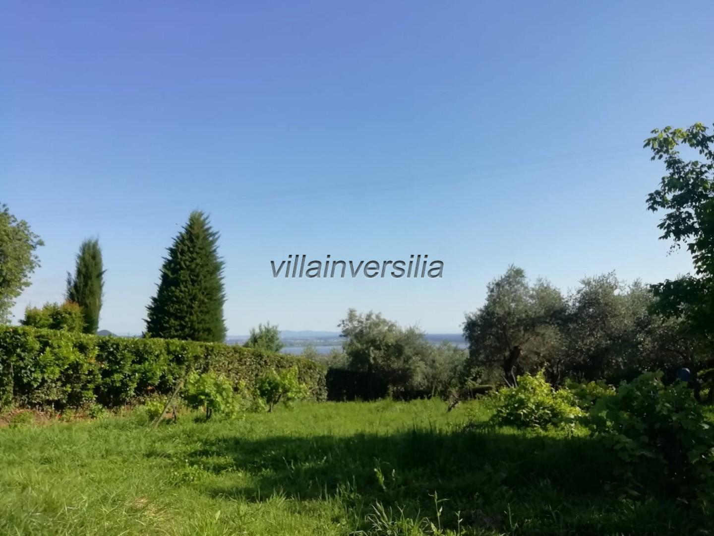 Foto 11/11 per rif. V 552020 collina Massarosa