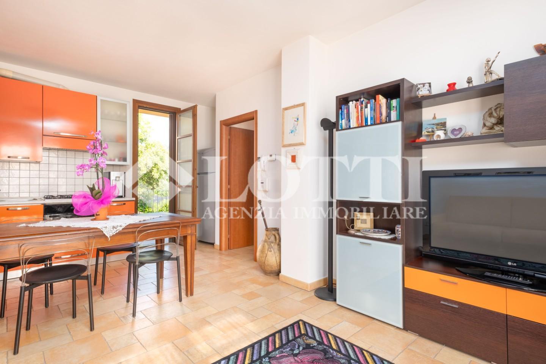 Appartamento in affitto, rif. 699
