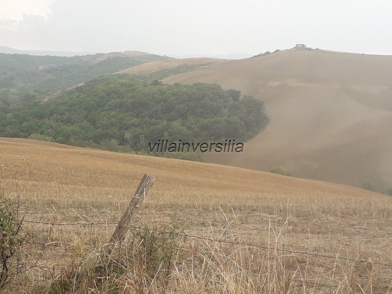 Terreno agricolo a Asciano