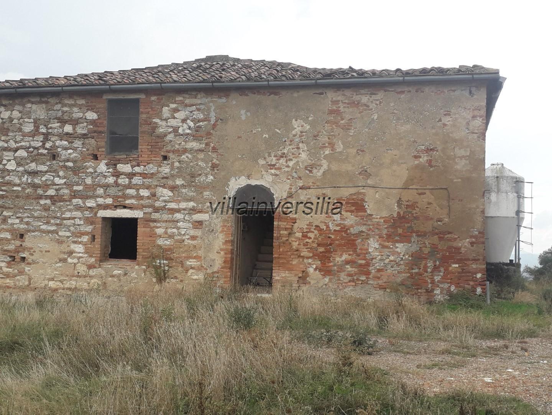 Photo 3/11 for ref. V 782020 azienda Siena