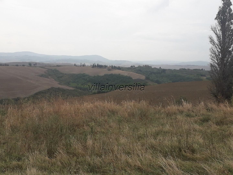 Foto 2/2 per rif. V 792020 Tenuta Toscana