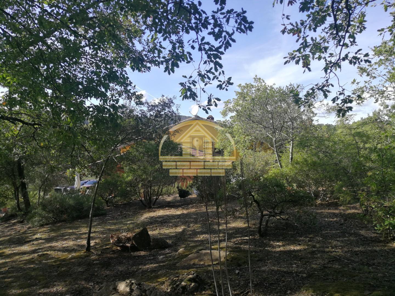 Casa singola in vendita, rif. 424