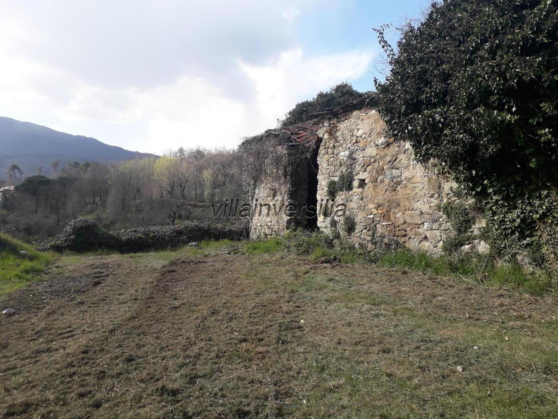 Foto 9/18 per rif. V 842020 podere Lunigiana