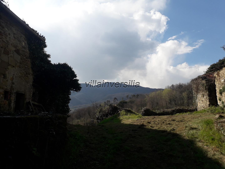 Foto 12/18 per rif. V 842020 podere Lunigiana