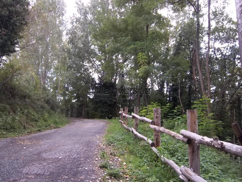 Foto 7/7 per rif. V 842020 podere Lunigiana