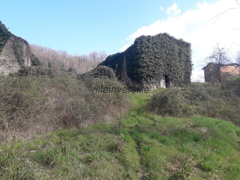 Foto 14/18 per rif. V 842020 podere Lunigiana