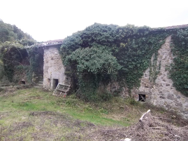 Foto 4/7 per rif. V 842020 podere Lunigiana