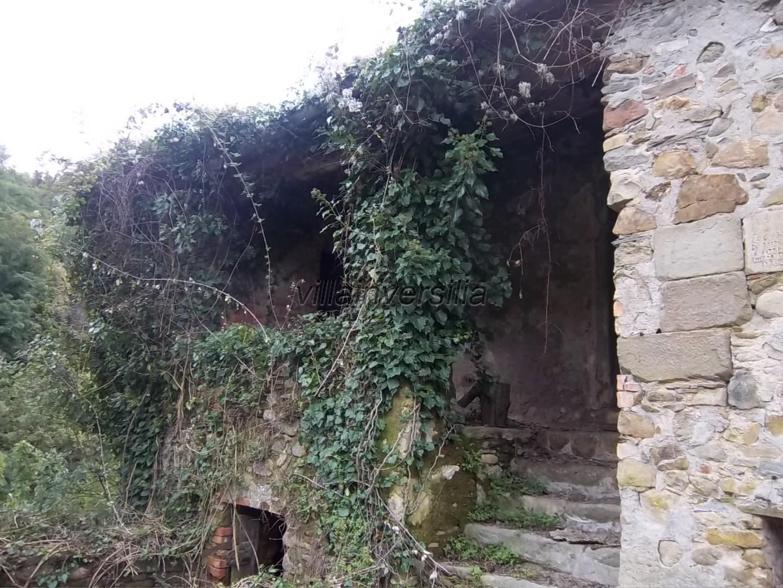 Foto 6/7 per rif. V 842020 podere Lunigiana